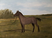 Michelle Treanor - Blue Roan