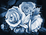 Midnight Blue Prints - Blue Rose Flower Bouquet Print by Jennie Marie Schell