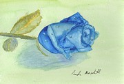 Pamela  Meredith - Blue Rose