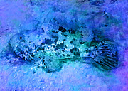 Animalsandearth Digital Art Originals - Blue scorpionfish by Sandrino Kasic