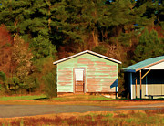 Shed Painting Posters - Blue Shed In Early Morning Light - Lake Wheeler Road Poster by Paulette Wright