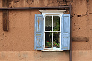 Ashley Mann - Blue Shutters