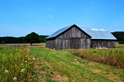 Wooden Barn Posters - Blue Skies  Poster by Michelle Calkins