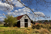 Tennessee Barn Posters - Blue Skies Red Roof Poster by Debra and Dave Vanderlaan