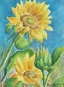 Lynn Maverick Denzer - Blue Skies Sunflower