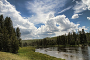 Edward R Wisell - Blue Sky in Yellowstone