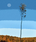 Pam Clark - Blue Sky Tree