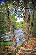 Marty Koch Metal Prints - Blue Spring Branch 2 Metal Print by Marty Koch