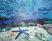 Star Fish Originals - Blue Star by Jen Dacota