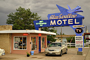 Swallow Photos - Blue Swallow Motel by Ricky Barnard