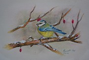 Titmouse Paintings - Blue Titmouse by Russell Fox