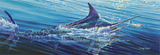 Striped Marlin Prints - Blue Tranquility Off0051 Print by Carey Chen