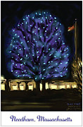 Massachusetts Drawings Posters - Blue Tree Poster by Jean Pacheco Ravinski