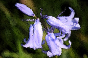 Close Up Digital Art - Blue Trumpets by Anne Beatty