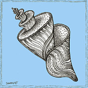 Shell Drawings - Blue Twirly Shell by Stephanie Troxell