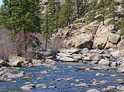 Rock Walls Prints - Blue Waters Platte River Colorado Fly Fisherman Print by Jennie Marie Schell