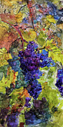 Blue Grapes Mixed Media Prints - Blue Wine Grapes Watercolor and Ink Print by Ginette Callaway