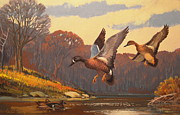 Masterpiece Originals - Blue-Winged Teal by Lee LeBlanc by Alan Kurtz