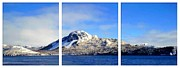 Panorama Mountain Images Prints - Blue Winter Triptych Print by Barbara Griffin