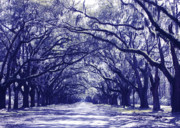 Streaming Light Prints - Blue World in Savannah Print by Carol Groenen
