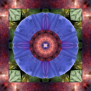 Mandala Photos - Blue Yonder by Bell And Todd