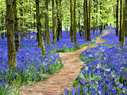 Outdoor Still Life Paintings - Bluebells Ashridge forest by James Shepherd