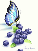 Blueberry Digital Art Prints - Blueberries and Butterfly Print by Veronica Minozzi