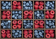 Raspberries Framed Prints - Blueberries and Raspberries  Framed Print by Tim Gainey