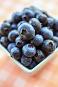 Picked Metal Prints - Blueberries closeup Metal Print by Edward Fielding