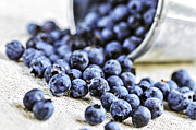 Pail Prints - Blueberries Print by Elena Elisseeva