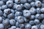 Fresh Produce Prints - Blueberries Print by Jaroslaw Grudzinski