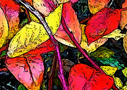 Blueberry Digital Art Prints - Blueberry Autumn Leaves Print by Gary Olsen-Hasek