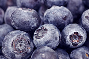Fresh Fruit Posters - Blueberry Macro Poster by Kitty Ellis