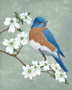 Fran Brooks - Bluebird and Dogwood
