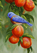 Crista Forest - Bluebird and Peaches Greeting Card 2