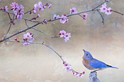 Bonnie Barry - Bluebird and Plum...