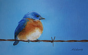 Cold Pastels Framed Prints - Bluebird on the Wire Framed Print by Marna Edwards Flavell