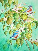 Kathryn Duncan - Bluebirds In Flowering...