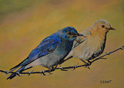 Bluebird Pastels Framed Prints - Bluebirds Framed Print by Joanne Grant