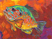 Mike Savlen - Bluegill Study