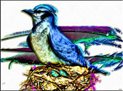 Bluejay Digital Art Posters - Bluejay Nesting Poster by Daniel Janda