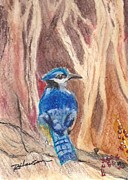Bluejay Paintings - Bluejay by Ruthann  Hanson