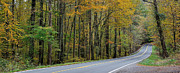 Yellow Line Photo Prints - Blueridge Parkway Virginia Print by Todd Hostetter