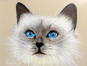 Cat Pastels - Bluey by Ruth Jamieson