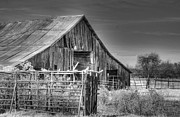 Lisa Moore - Bluff Barn