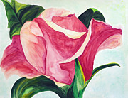 Rose Petals Prints - Blushing Print by Donna Blackhall