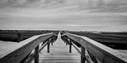 Adam Caron Metal Prints - Boardwalk Metal Print by Adam Caron