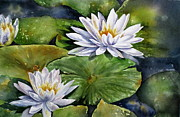 Mary McCullah - Boardwalk Lilies