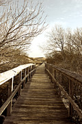 Gail Maloney - Boardwalk Plum Island