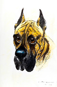 Chalk Drawing Metal Prints - Boarhound portrait Metal Print by Kurt Tessmann